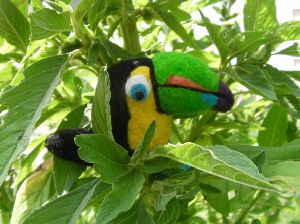 A Needle Felted Tropical Bird: The Toucan