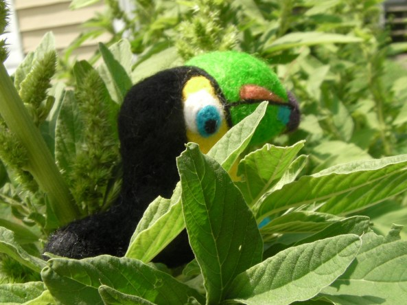 The backview of a needle felted toucan.