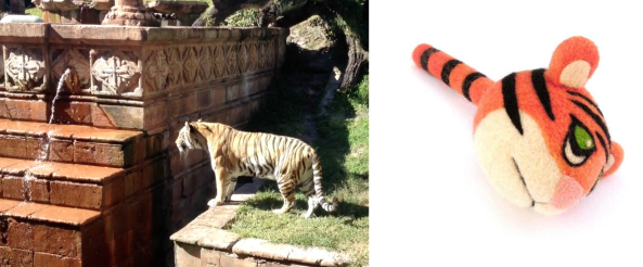 Real Tiger and Toy Felt Tiger